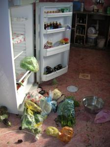 ربما اختبأ الهاربين فى الثلاجة