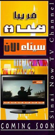 قناة سيناء الآن - Sinai Now TV Channel